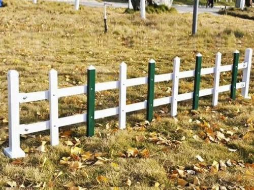 绿化PVC草坪护