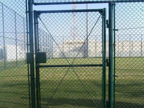 学校操场选择体育