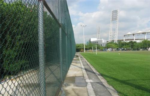 球场围网的功能特