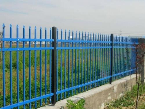 农村小院围栏
